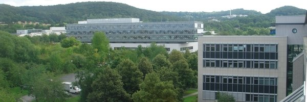 Max Planck Institute for Solar System Research and Institute for Astrophysics Goettingen IMPRS Partner Institutes