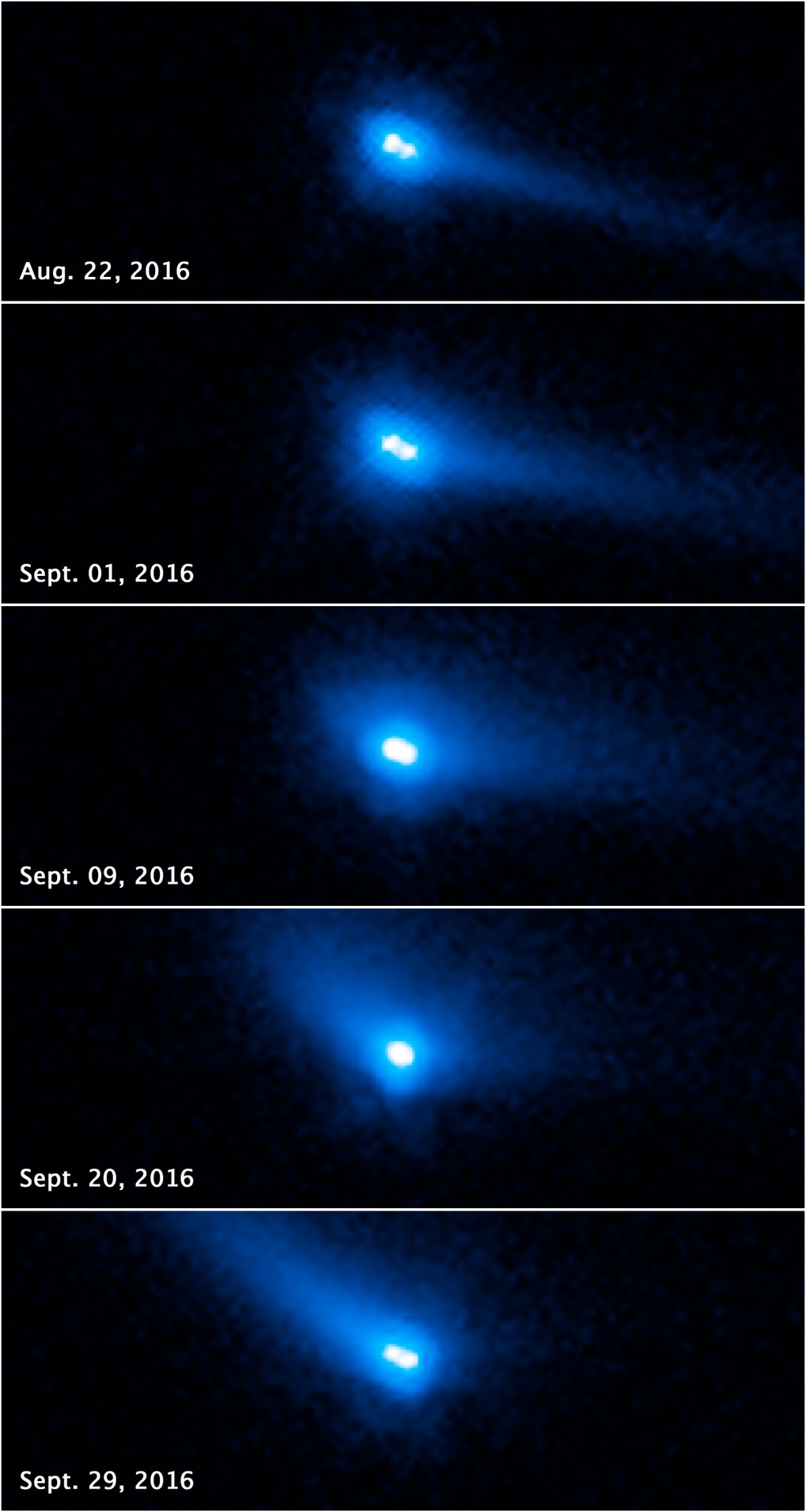 This set of photos from the ESA/NASA Hubble Space Telescope reveals the binary nature of asteroid 288P and show comet-like features. These include a bright halo of material, called a coma, and a long tail of dust.